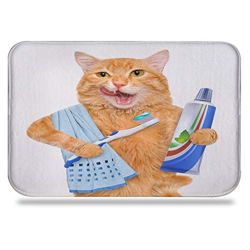 """Colorful Star Fat cat Brushing Teeth Design Bath mat,Super Absorbent&Stain Resistant&Machine-Washable Made of Flannel,Quick-Dry,Non Slip,Non Toxic, Odor Free 24"""" L x 16"""" W"""
